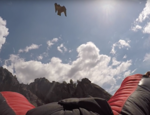 Falcon Photobombs Basejumper's Wingsuit Flight