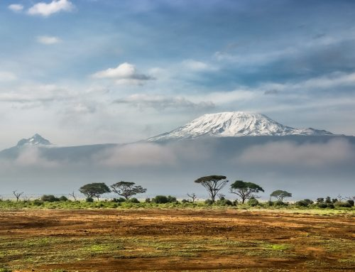 Kilimanjaro: First of the Seven Summits