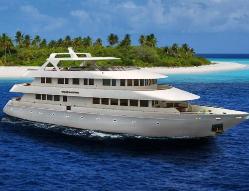 What is a Liveaboard Dive Boat?